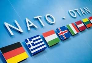 Nato and Trump Allignce